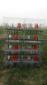供鸡鸽兔笼/蛋鸡笼/雏鸡笼/肉鸡笼/鸽子笼/兔子笼/养殖笼具
